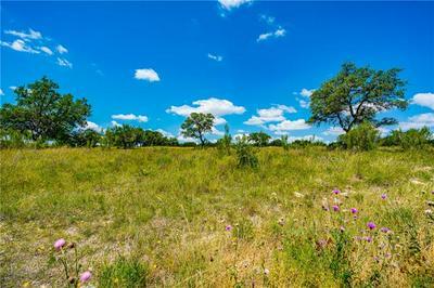 LOT 140 CEDAR MOUNTAIN DRIVE, Spicewood, TX 78669 - Photo 2