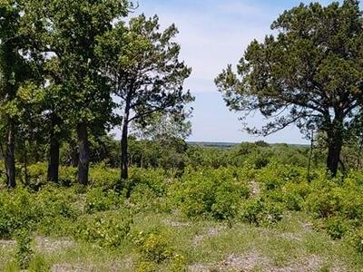000 COUNTY RD 250, Burnet, TX 78611 - Photo 2