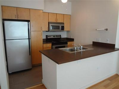 1201 GROVE BLVD APT 2601, Austin, TX 78741 - Photo 2