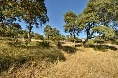 1740 CAMP CRAFT RD, West Lake Hills, TX 78746 - Photo 2