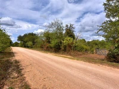 000 BOGGY CREEK RD, Lockhart, TX 78644 - Photo 2