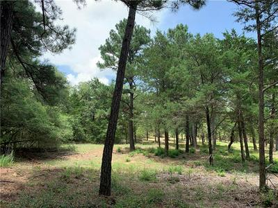 227 CORRAL RD, Smithville, TX 78957 - Photo 1