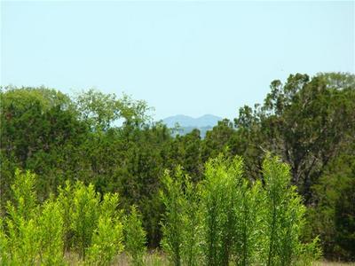 13462 RANCH ROAD 2325, Blanco, TX 78606 - Photo 2