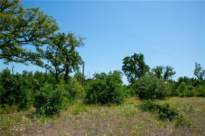 TBD PONDEROSA LOOP, Paige, TX 78659 - Photo 2