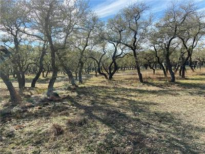 0 RUNNING DEER LN, Dripping Springs, TX 78620 - Photo 2