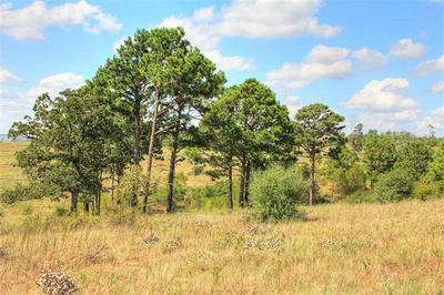TBD TRACT 9 GOTIER TRACE RD, SMITHVILLE, TX 78957 - Photo 1