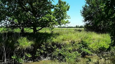 LOT 23 11.24 AC COUNTY ROAD 417, Thorndale, TX 76577 - Photo 1