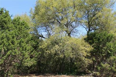 1570 HAWTHORNE LOOP, DRIFTWOOD, TX 78619 - Photo 2