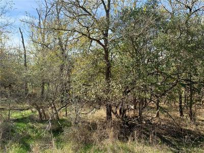 296 KAAAWA LN, Bastrop, TX 78602 - Photo 1