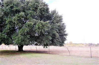 TBD LIVE OAK RD, Lexington, TX 78947 - Photo 1