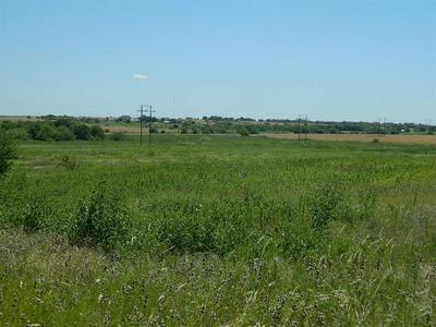 0 SKOG RD, Coupland, TX 78615 - Photo 2
