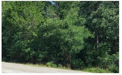 TBD CHOCTAW TRAIL DR, Smithville, TX 78957 - Photo 1
