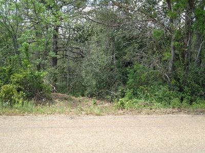 TBD SAYERS RD, Bastrop, TX 78602 - Photo 1