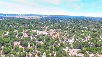 2W TRACT 4 COUNTY ROAD 2200, Lometa, TX 76853 - Photo 2