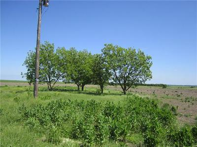 250 COUNTY ROAD 159, GRANGER, TX 76530 - Photo 1