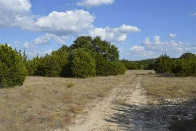 386 APPALOOSA RUN, Round Mountain, TX 78663 - Photo 1