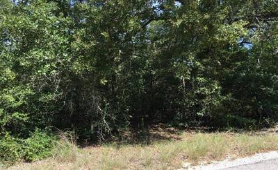105 ARAPAHO DR, Smithville, TX 78957 - Photo 2