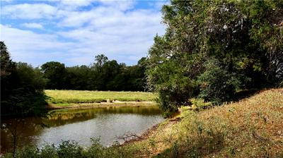 TBD EASELY RD, Smithville, TX 78957 - Photo 1