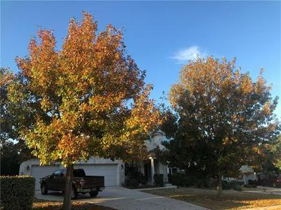 22129 ROSE GRASS LN, SPICEWOOD, TX 78669 - Photo 2