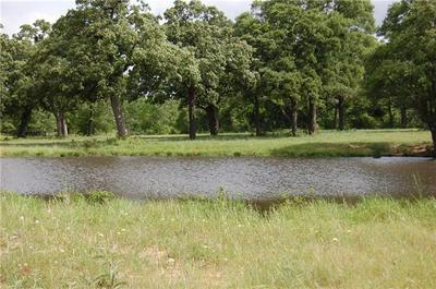 TRACT 1 CR 455, THRALL, TX 76578 - Photo 2