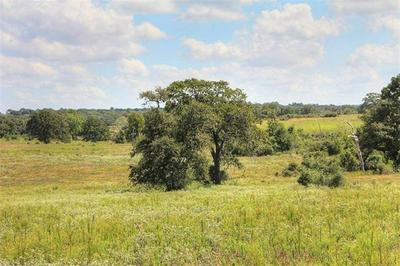 TBD TRACT 9 GOTIER TRACE RD, SMITHVILLE, TX 78957 - Photo 2
