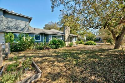 1008 E LIVE OAK ST, Austin, TX 78704 - Photo 2
