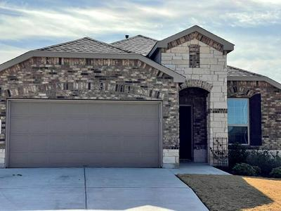 11617 AMBER STREAM LN, Manor, TX 78653 - Photo 1