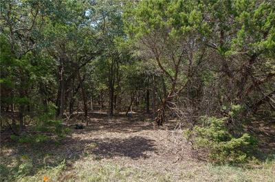 491E JENNIFER LN, Driftwood, TX 78619 - Photo 2