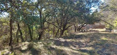TBD TURKEY TREE RD, Spicewood, TX 78669 - Photo 1