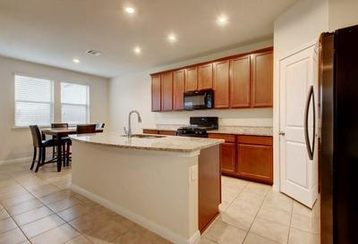 11728 PECANGATE WAY, Manor, TX 78653 - Photo 2