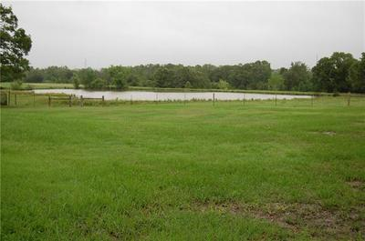 TRACT 3 CR 455, THRALL, TX 76578 - Photo 2