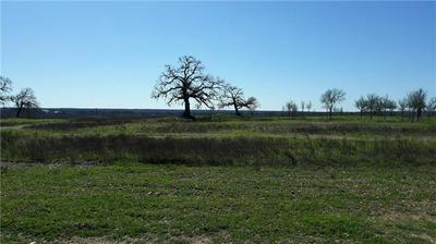TRACT 1 HERSHAL LN, Cedar Creek, TX 78612 - Photo 2