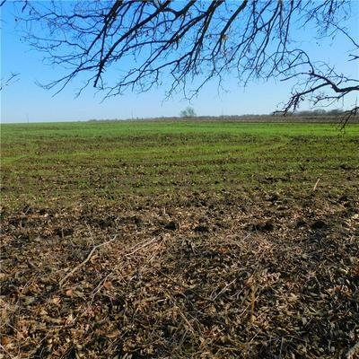 LOT 22 COUNTY ROAD 417, Thorndale, TX 76577 - Photo 2