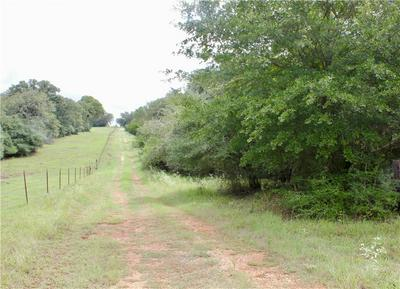 PID 30531 COUNTY ROAD 413, Tanglewood, TX 78947 - Photo 2