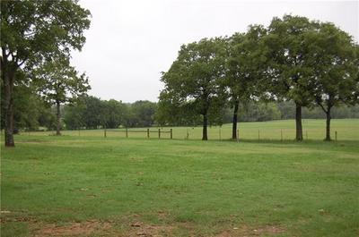 TRACT 3 CR 455, THRALL, TX 76578 - Photo 1