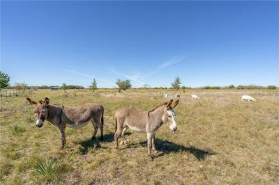 TBD COUNTY RD 223, Florence, TX 76527 - Photo 2