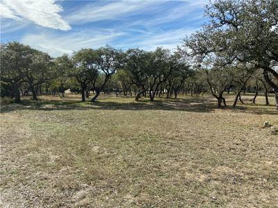 0 RUNNING DEER LN, Dripping Springs, TX 78620 - Photo 1