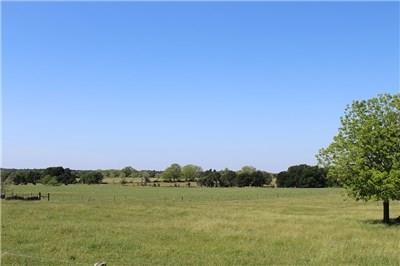 1325 PRAIRIE VALLEY RD, West Point, TX 78963 - Photo 1