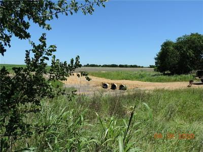 11.24 AC COUNTY ROAD 417, Thorndale, TX 76577 - Photo 2