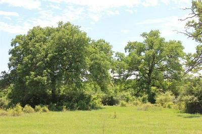 TBD TRACT 7 GOTIER TRACE RD, Smithville, TX 78957 - Photo 2