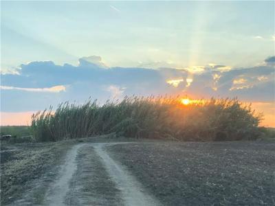 0TBD FM1331, Thorndale, TX 76577 - Photo 2
