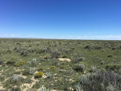 WILLOW LAKE ROAD, MCINTOSH, NM 87032 - Photo 2