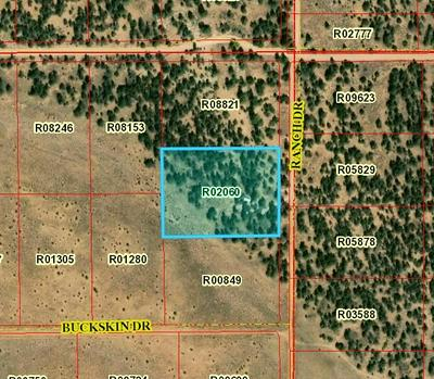 LOT 179 RANCH DR - PINE MEADOWS UNIT 3, Ramah, NM 87321 - Photo 2