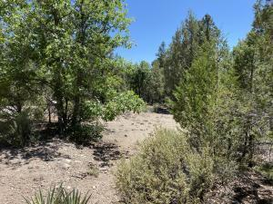 LOT 21 ROADRUNNER DRIVE, Ramah, NM 87321 - Photo 1
