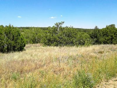 7 BELLE STARR RD, Edgewood, NM 87015 - Photo 1