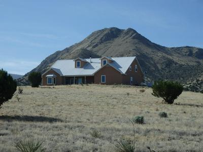 1100 10TH STREET, Magdalena, NM 87825 - Photo 1