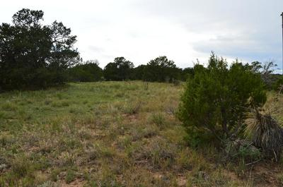 840 NM STATE ROAD 217, Edgewood, NM 87015 - Photo 2