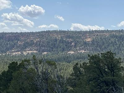 LOT 7 BLUEBIRD ROAD, Ramah, NM 87321 - Photo 1