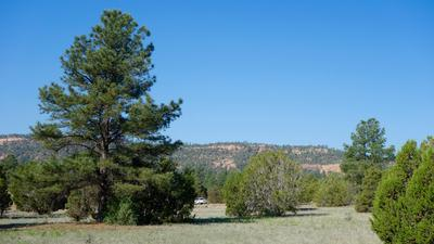 9 TIMBER LAKE RD, Ramah, NM 87321 - Photo 2