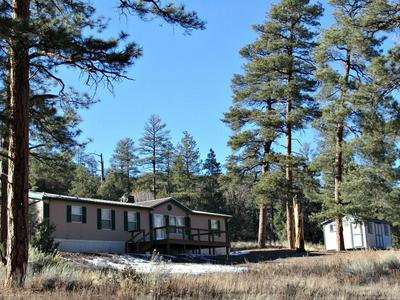 6974 HIGHWAY 60, DATIL, NM 87821 - Photo 1